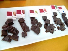 domoricacaocriollotasting.jpg